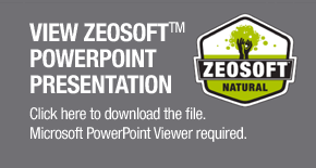 Click to download Zeosoft PowerPoint presentation